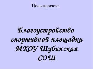 Благоустройство спортивной площадки МКОУ Шубинская СОШ Цель проекта: