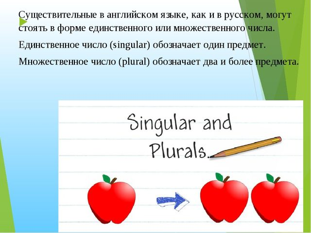 Существительные в английском языке, как и в русском, могут стоять в форме ед...