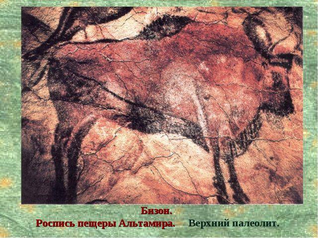 Бизон. Роспись пещеры Альтамира. Верхний палеолит.
