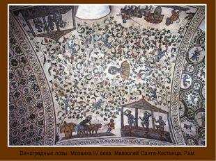 Виноградные лозы. Мозаика IV века. Мавзолей Санта-Костанца. Рим