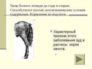 Чаще болеют лошади до года и старые. Способствуют плохие зоогигиенические усл