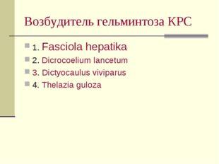 Возбудитель гельминтоза КРС 1. Fasciola hepatika 2. Dicrocoelium lancetum 3.