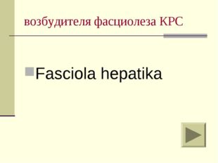 возбудителя фасциолеза КРС Fasciola hepatika