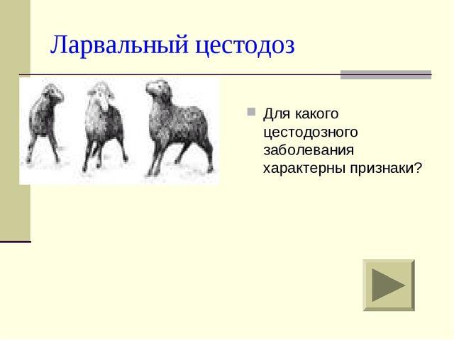 Методическая разработка и презентация внеклассного мероприятия по ...