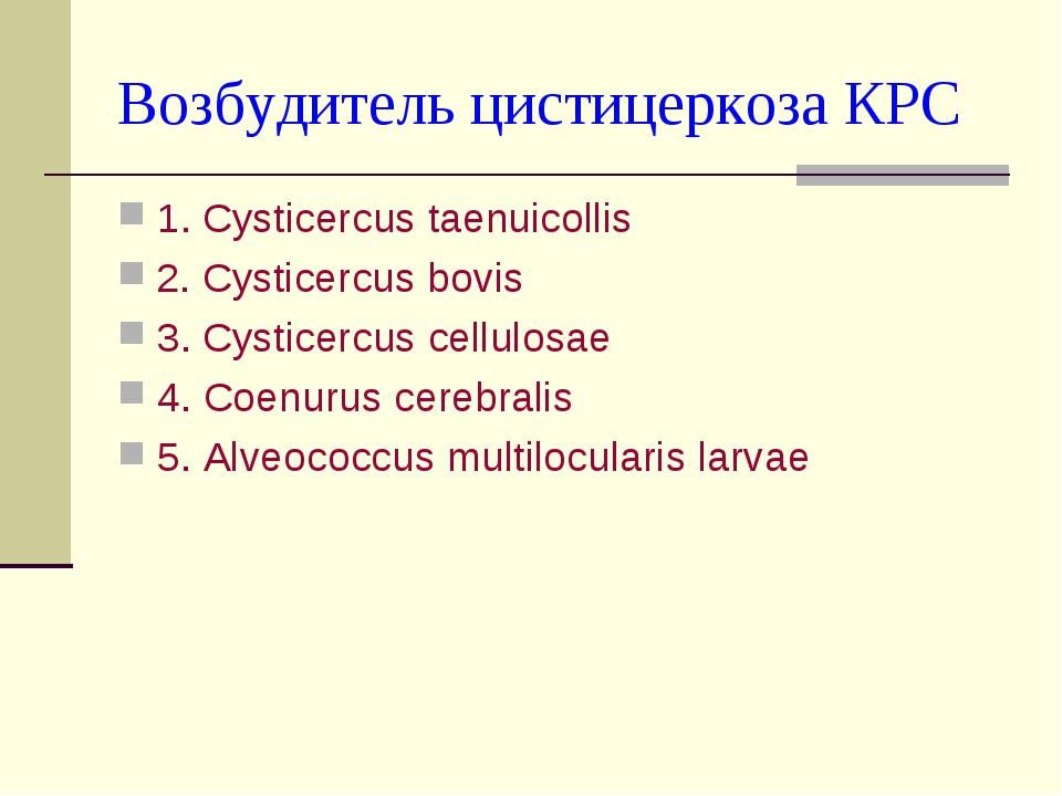 Возбудитель цистицеркоза КРС 1. Cysticercus taenuicollis 2. Cysticercus bovis...