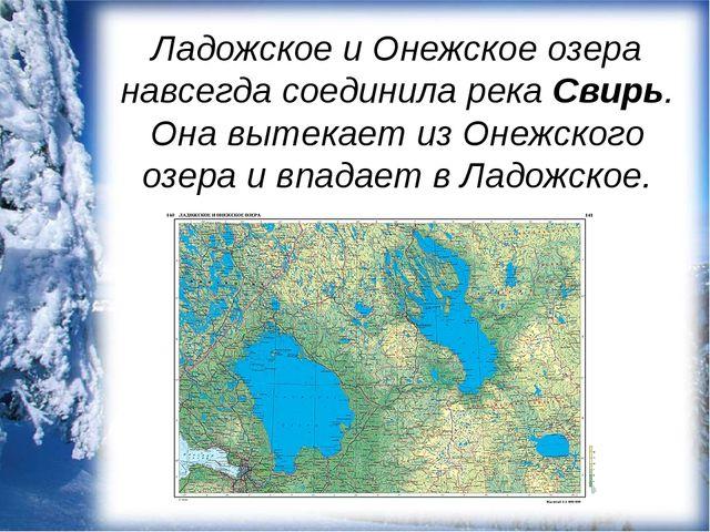 Ладожское и Онежское озера навсегда соединила река Свирь. Она вытекает из Оне...
