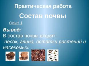 Практическая работа Состав почвы Опыт 1 Вывод: В состав почвы входят: песок,