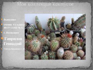 Выполнил ученик 6 а класса МОУ СОШ № 1. г. Волжского Гаврилов Геннадий Учител