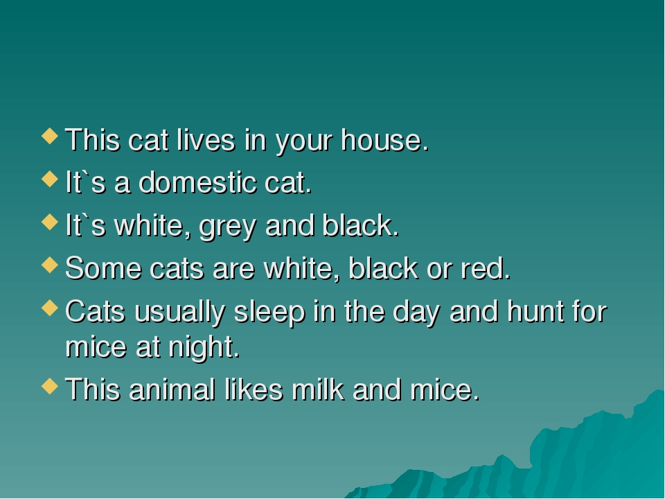 This cat lives in your house. It`s a domestic cat. It`s white, grey and black...
