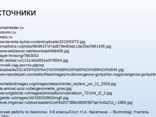 Источники http://animalreader.ru http://zaikinmir.ru http://pikabu.ru http://