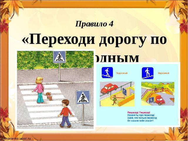 Правило 4 «Переходи дорогу по пешеходным переходам»
