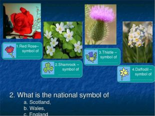 2. What is the national symbol of a. Scotland, b. Wales, c. England d. Northe