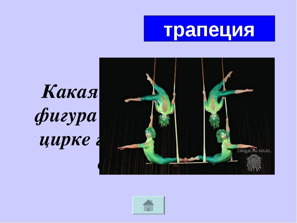 Какая геометрическая фигура подрабатывает в цирке гимнастическим снарядом? тр...