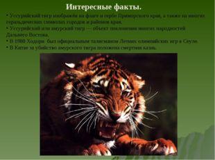 Интересные факты. Уссурийский тигр изображён на флаге и гербе Приморского кра