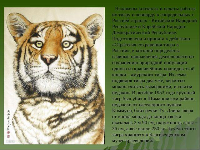 Налажены контакты и начаты работы по тигру и леопарду в сопредельных с Росси...