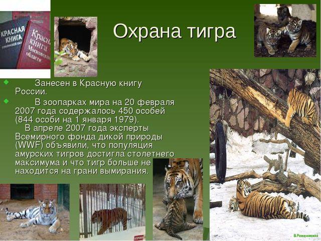 Охрана тигра Занесен в Красную книгу России. В зоопарках мира на 20 февраля...