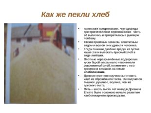 Как же пекли хлеб Археологи предполагают, что однажды при приготовлении зерно