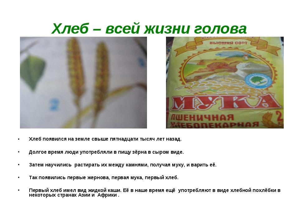 Хлеб – всей жизни голова Хлеб появился на земле свыше пятнадцати тысяч лет на...