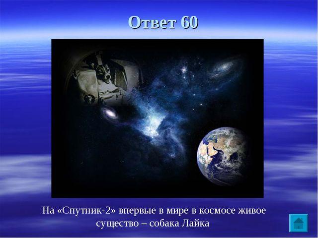 Ответ 60 На «Спутник-2» впервые в мире в космосе живое существо – собака Лайка