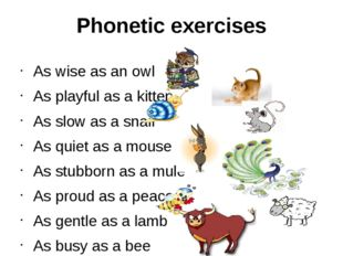 Phonetic exercises As wise as an owl As playful as a kitten As slow as a snai