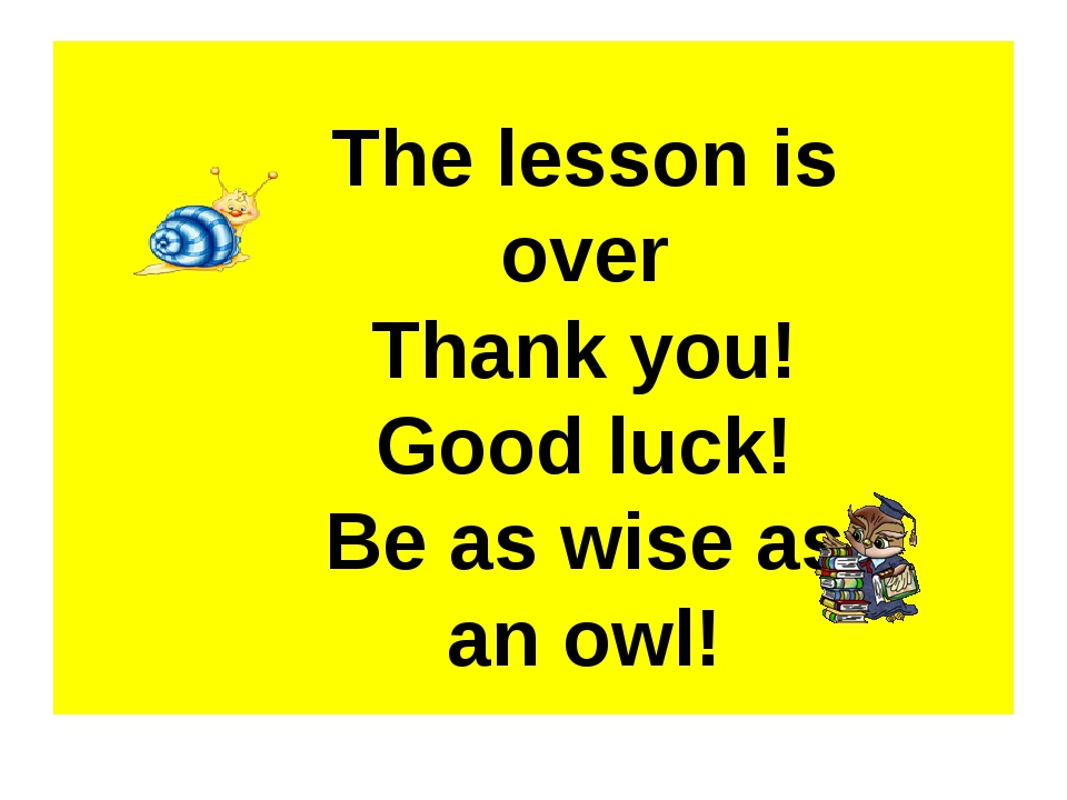 The lesson is over Thank you! Good luck! Be as wise as an owl!