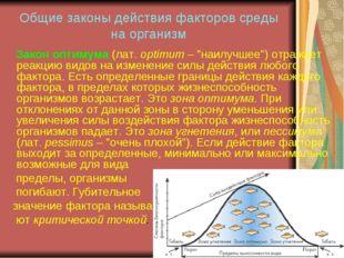 Общие законы действия факторов среды на организм Закон оптимума (лат. optimum