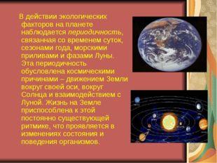 В действии экологических факторов на планете наблюдается периодичность, связ