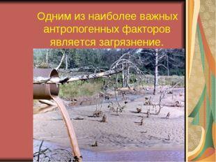 Одним из наиболее важных антропогенных факторов является загрязнение.
