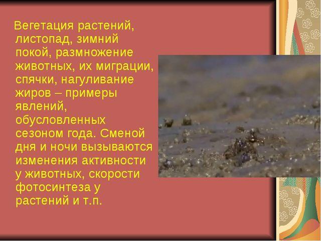 Вегетация растений, листопад, зимний покой, размножение животных, их миграци...