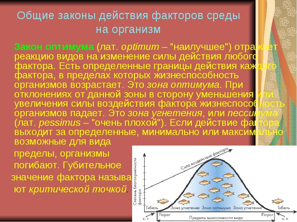 Общие законы действия факторов среды на организм Закон оптимума (лат. optimum...