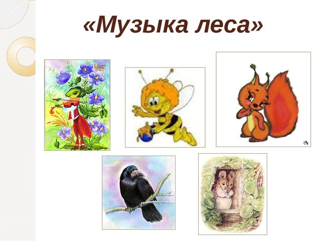 «Музыка леса»