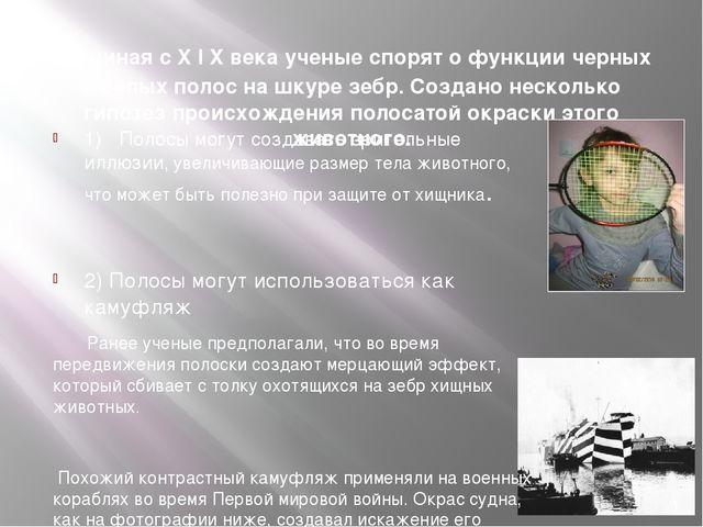 Начиная с X I X века ученые спорят о функции черных и белых полос на шкуре з...