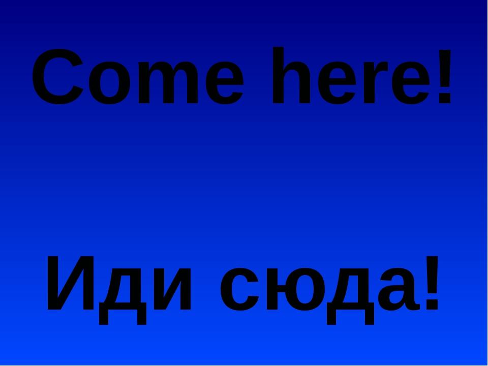 Come here! Иди сюда!