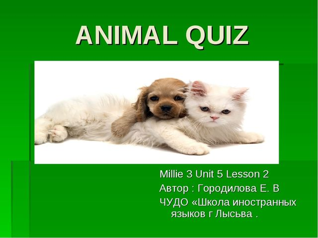 ANIMAL QUIZ Millie 3 Unit 5 Lesson 2 Автор : Городилова Е. В ЧУДО «Школа инос...
