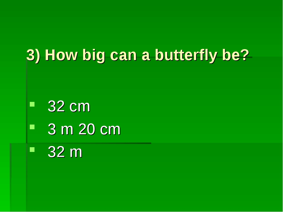 3) How big can a butterfly be? 32 cm 3 m 20 cm 32 m