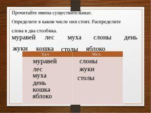 Прочитайте имена существительные. Определите в каком числе они стоят. Распред