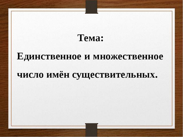 Тема: Единственное и множественное число имён существительных.
