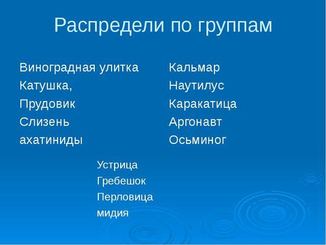 Распредели по группам Виноградная улитка Катушка, Прудовик Слизень ахатиниды...