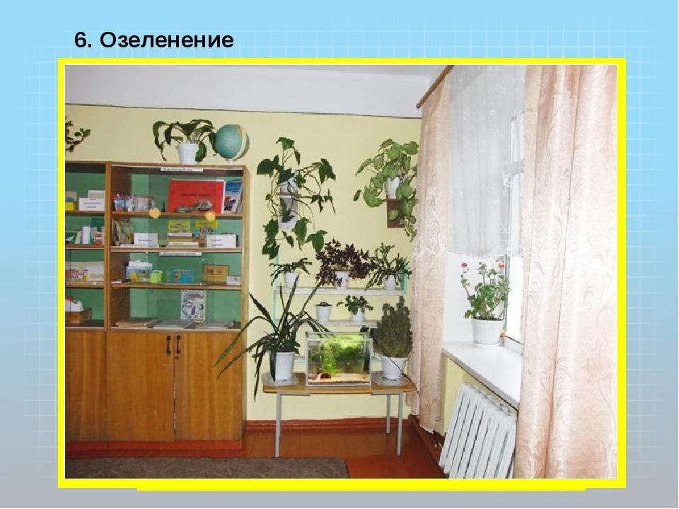6. Озеленение кабинета