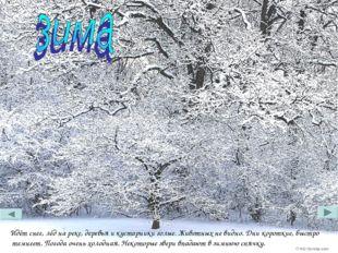 Идёт снег, лёд на реке, деревья и кустарники голые. Животных не видно. Дни ко