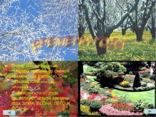 Очень многие явления природы связаны со сменой времён года (сезонов). Они наз