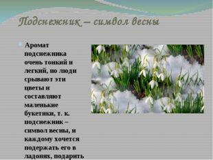 Подснежник – символ весны Аромат подснежника очень тонкий и легкий, но люди с