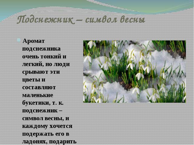 Подснежник – символ весны Аромат подснежника очень тонкий и легкий, но люди с...