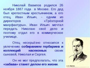 Николай Вавилов родился 26 ноября 1887 года в Москве. Его дед был крепостным