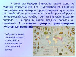 Итогом экспедиции Вавилова стало одно из главных открытий учёного – установл