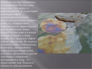 Наиболее распространенные загрязняющие Москву-реку вещества – это нефть и не