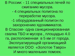 В России: - 11 специальных печей по сжиганию мусора. - 4 специальных полигона