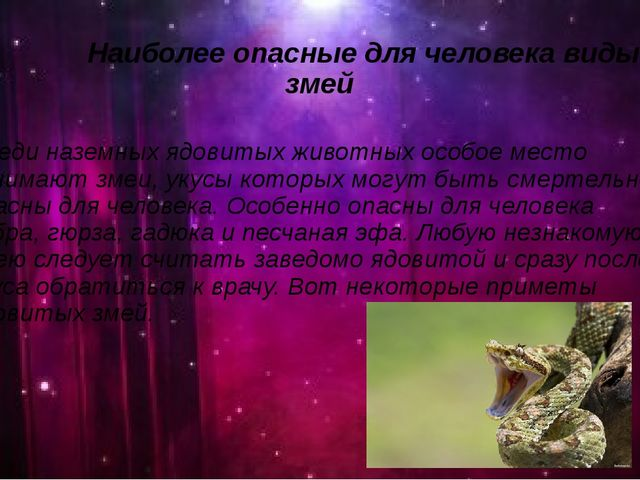 Наиболее опасные для человека виды змей Среди наземных ядовитых животных осо...