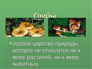 Грибы особое царство природы, которое не относится ни к миру растений, ни к