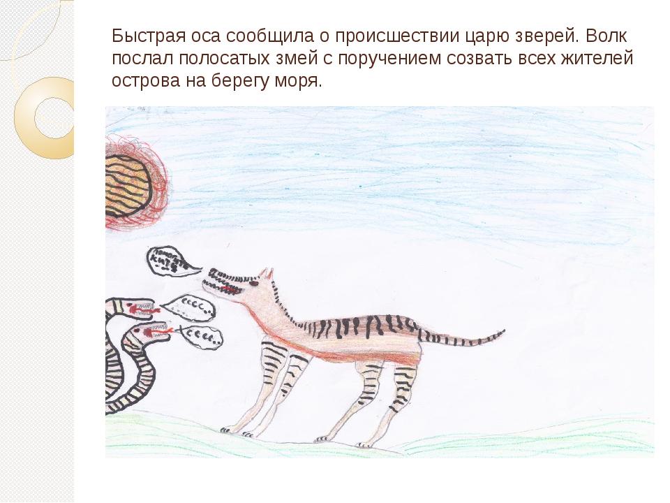 Быстрая оса сообщила о происшествии царю зверей. Волк послал полосатых змей с...